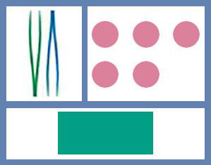 Mediset Verbandwechsel-Set Nr.4b steril P.à 1